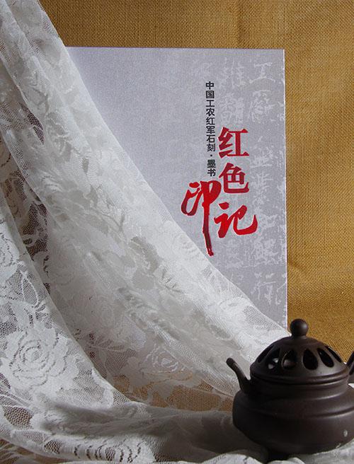 四川政府画册设计